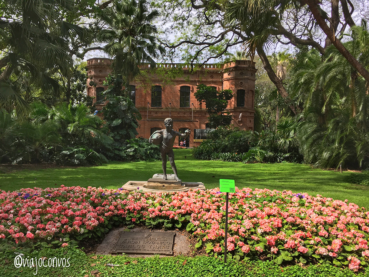 Un paseo por el jard n bot nico de buenos aires viajo for Conciertos jardin botanico 2017
